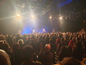 הקהל בהופעה